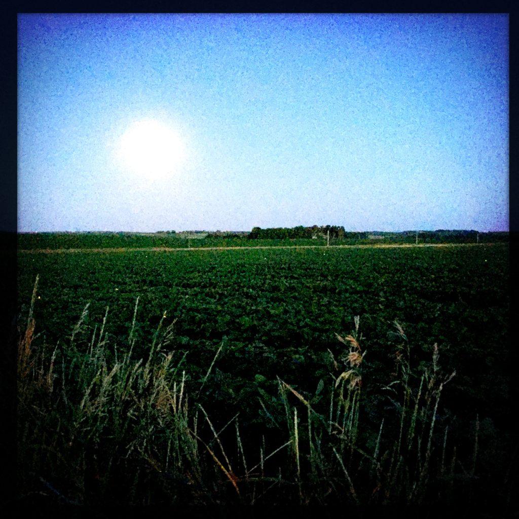 South Dakota field at dusk - copyright David Quitmeyer
